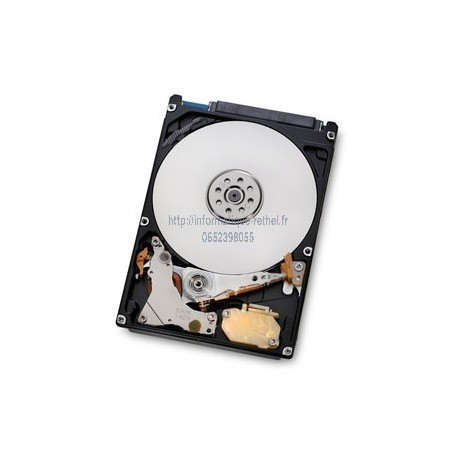 Disque dur interne 1 To Hitachi Travelstar 7K1000